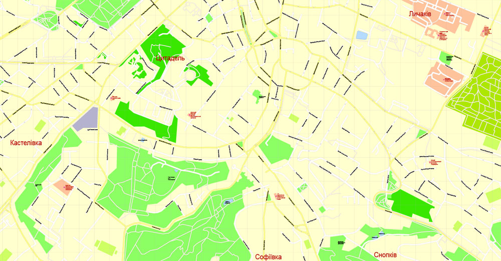 Street map Lviv Ukraine PDF