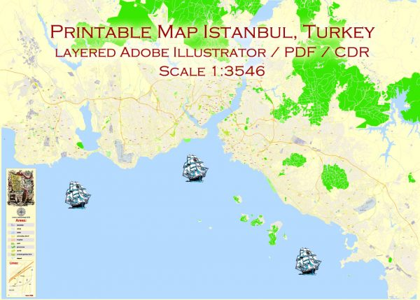 Istanbul Printable Vector Map, Turkey, exact City Plan, 100meters scale street map, fully editable, Adobe Illustrator