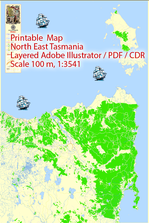 Printable Map North East Tasmania, exact vector City Plan Map street G-View Level 17 (100 meters scale 1:3541) full editable, Adobe Illustrator