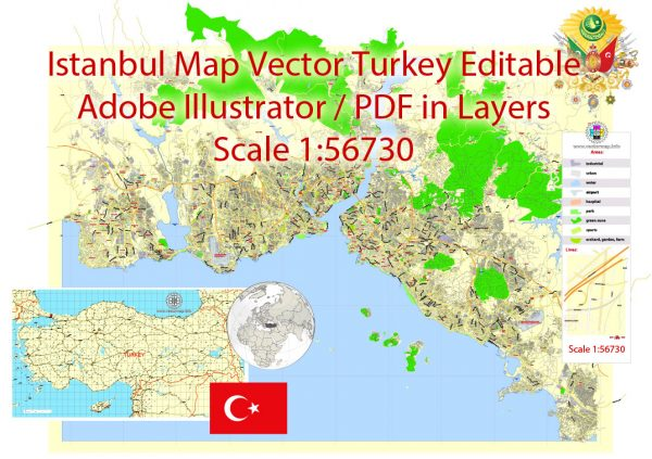 Printable Vector Map Istanbul, Turkey, exact City Plan 2000 meters scale street map editable, Adobe Illustrator in layers