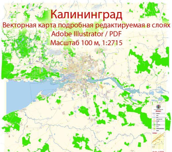 Калининград векторная карта города подробная редактируемая в слоях Adobe Illustrator