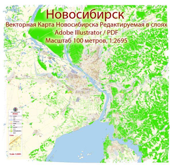 Новосибирск векторная карта подробная редактируемая в слоях Adobe Illustrator