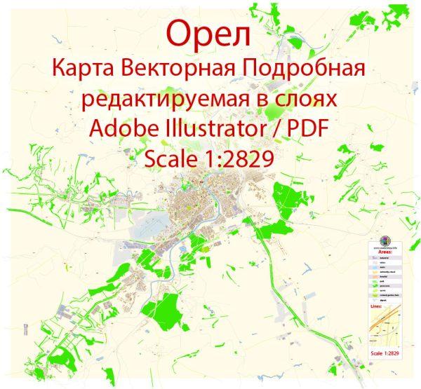 Орел векторная карта подробная редактируемая в слоях Adobe Illustrator