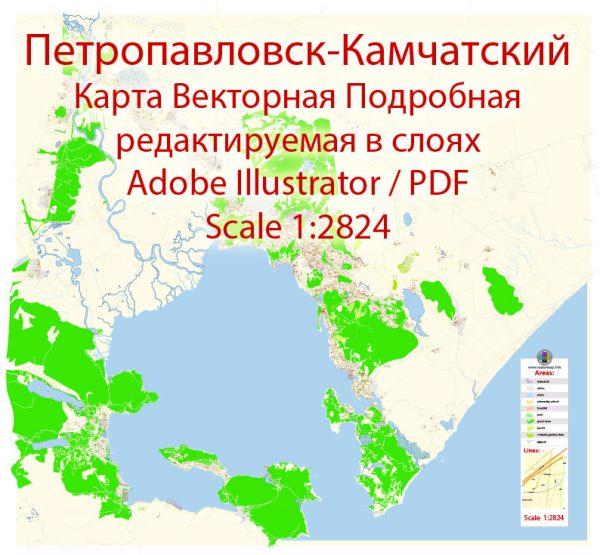 Петропавловск Камчатский векторная карта подробная редактируемая в слоях Adobe Illustrator