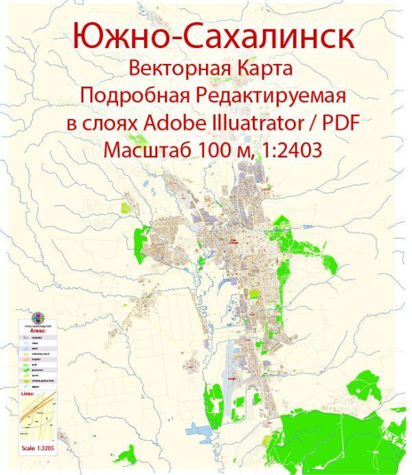 Южно-Сахалинск векторная карта города подробная редактируемая в слоях Adobe Illustrator